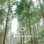 whowood